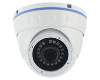 IP Dome 1080P 3.6mm IR POE ONVIF IPL3353